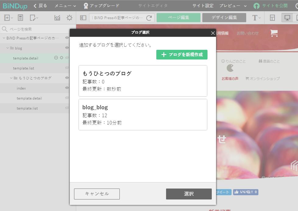 BiNDで本格ブログ!全コンテンツをブログ化した実例を紹介